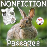 Rabbit Guided Reading Fluency Comprehension Passages for Spring or Easter Bunny