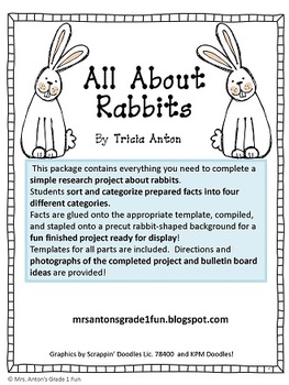 Rabbit Research Report