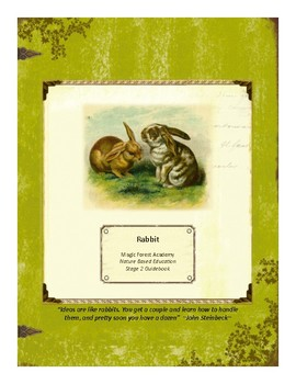 Rabbit Themed Nature Education Unit-Stage 2 (Magic Forest Academy)