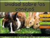 Rabbit Unit in Spanish