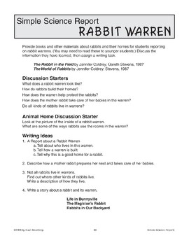 Rabbit Warren