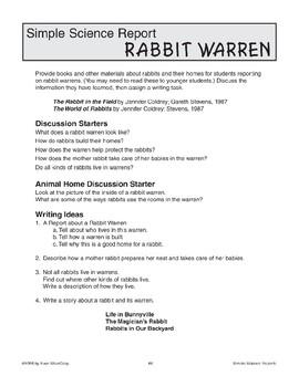 Rabbit Warren