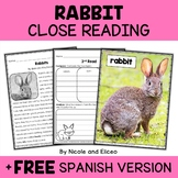 Close Reading Passage - Rabbit Activities