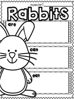Rabbits By 1st Grade Is Wienerful Teachers Pay Teachers