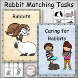 Rabbits Matching Tasks