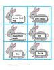 Rabbits!  Non fiction selection with math and literacy activities 40 pages