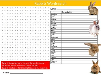 Rabbits Wordsearch Sheet Starter Activity Keywords Animals Nature