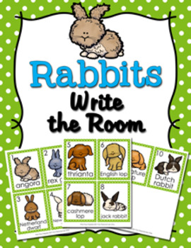 Rabbits Write the Room