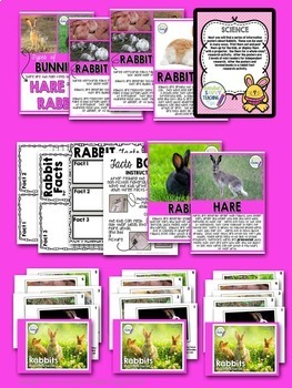 Rabbits - an Easter Non-Fiction Science Unit