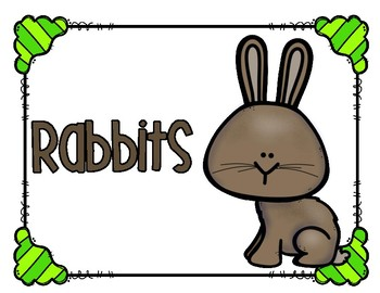 Rabbits for Kids!