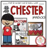 Raccoon Back to School Review Work