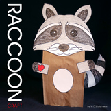 Raccoon Craft