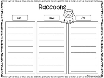 Raccoon Graphic Organizers