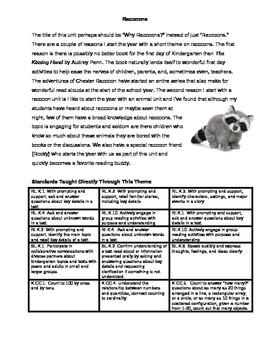 Raccoon Thematic Primary Unit