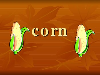 Raccoons and Ripe Corn PowerPoint