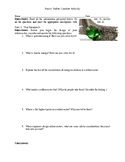 Racin' Rollercoaster Lab Challenge (Potential, Kinetic Energy)
