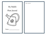 Radish Plant Journal