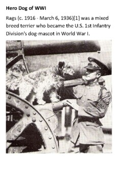 Rags War Hero Dog The Big Red One Handout