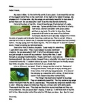 Rain Forest Animal Informational Text- 4 animals