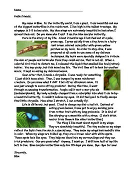 Rain Forest Animal Informational Text- 4 animals