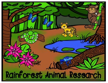 Rainforest Animal Research Graphic Organizer