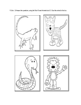 Rain Forest Animals for Primary Students