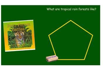 Rain Forest Babies SmartBoard Comprehension File
