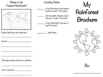 Rain Forest Brochure