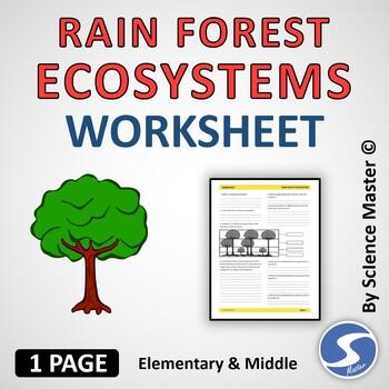 Rain Forest Ecosystems Worksheet