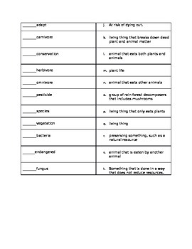 Rain Forest Food Chains Vocabulary Sheet