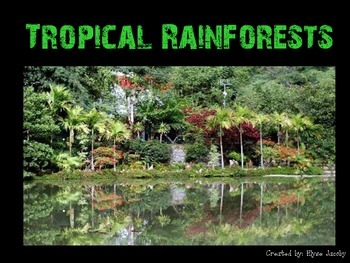 Rain Forest PowerPoint