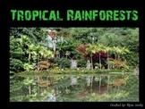 Rain Forest PowerPoint