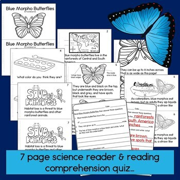 Rainforest Readers: Blue Morpho Butterfly Guided Reading Book