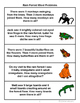 Rain Forest Word Problems