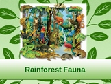 Rain forest Power Point