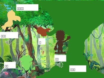Rain forest vocabulary input-Chinese