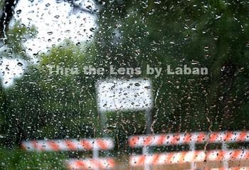 Rain on Windshield of Car Stock Photo #198
