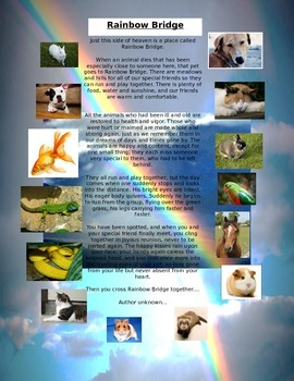 Rainbow Bridge for Grieving over Pets