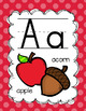 Rainbow Classroom Posters {Decor Set}