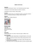 Rainbow Craft Lesson Plan