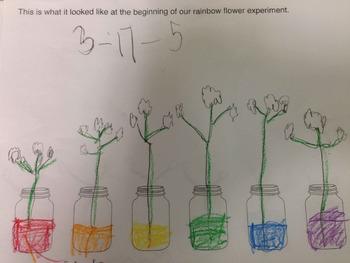 Rainbow Experiment Data Sheet