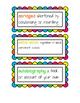 Rainbow Growing ELA Word Wall Words FREEBIE