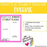 Rainbow Meet the Student Teacher FREEBIE