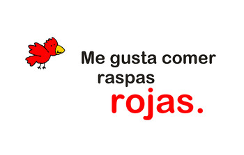 Rainbow Raspas Book - Spanish