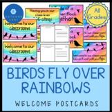 Rainbow and Bird Classroom Theme with Rainbow Classroom Dé