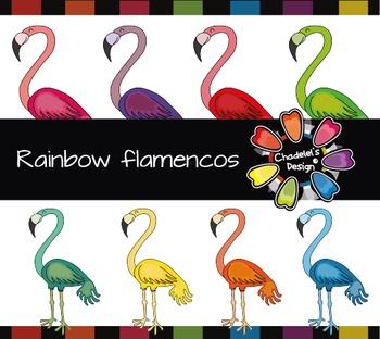 Rainbow flamingo