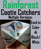 Rainforest Animals Activity/ Foldable (No Prep SCOOT Unit Review Game/ Quiz)