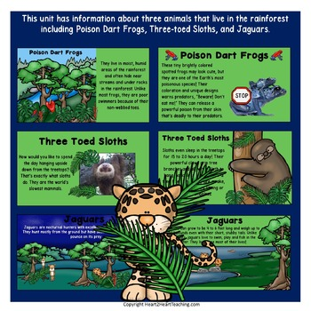 rainforest powerpoint by heart 2 heart teaching tpt