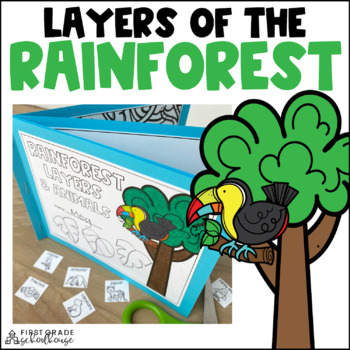 Rainforest Layers and Animals