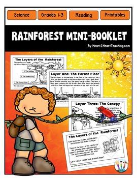 Rainforest Mini-Booklet - Rainforest Coloring Book